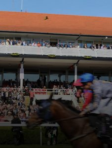 Chester Races at Barlounge